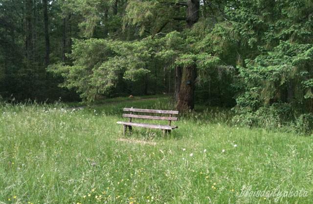 photo_17_bench