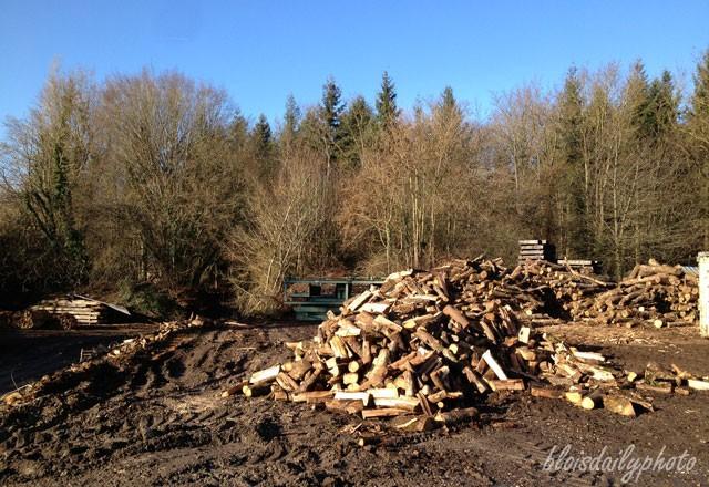 photo_147_wood_pile