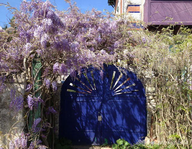 photo_104_wisteria_gate