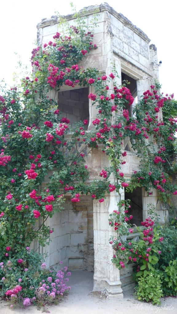 photo_154_tower_montreuil_castle