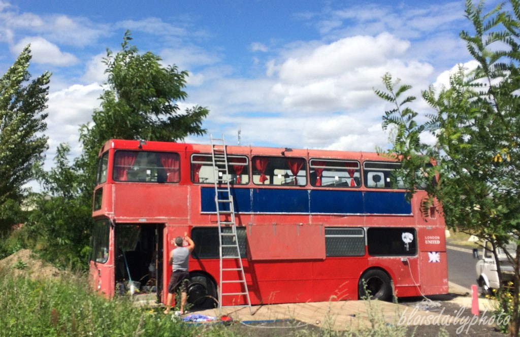 photo_230_red_bus