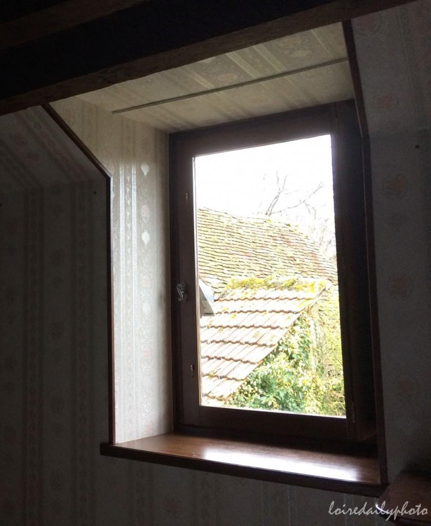 photo_24_flu_window