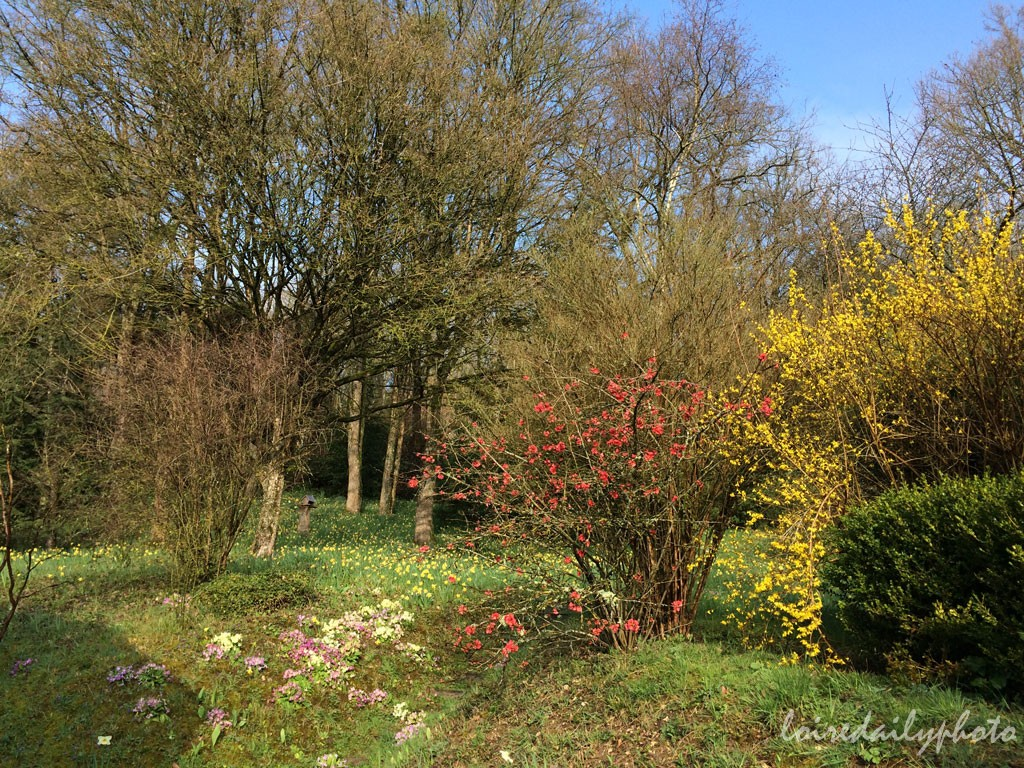 photo_77_spring_colours