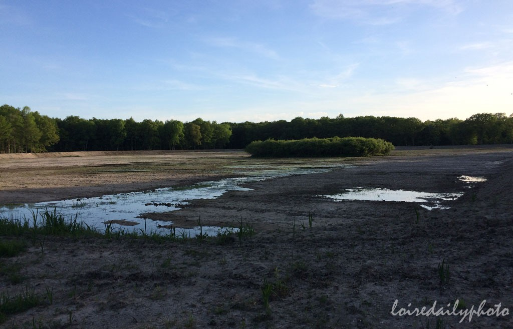photo_121_dried_pond
