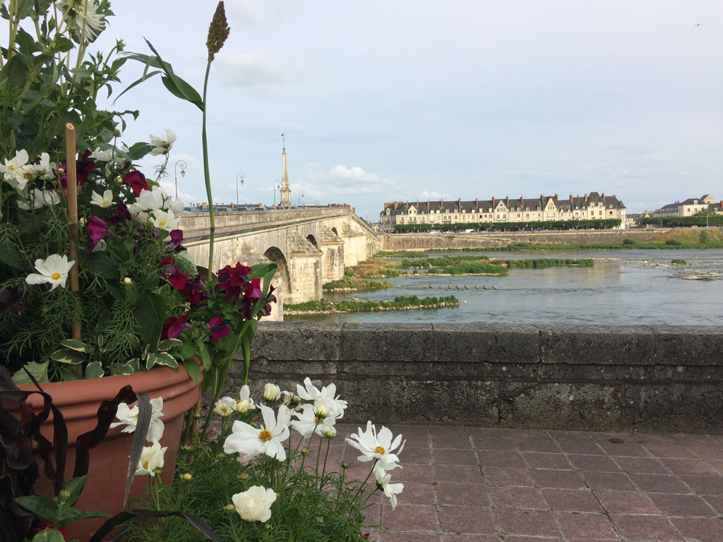 photo_146_flowers_blois_quai