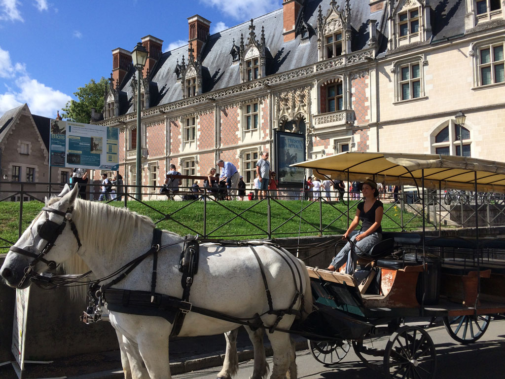 photo_191_horse_carriage_chateau