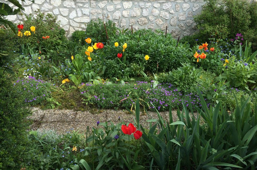 last_tulips